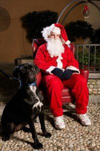 Foto con Babbo Natale - Silvia Onlus @ Ipercoop di Mirabello | Cantù | Lombardia | Italia