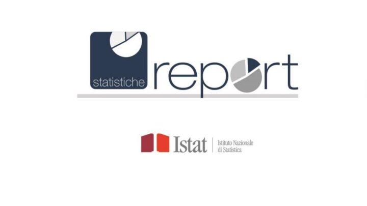 ISTAT Report 2020